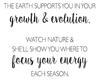 Watch nature & she'll show you where to focus your energy each season.