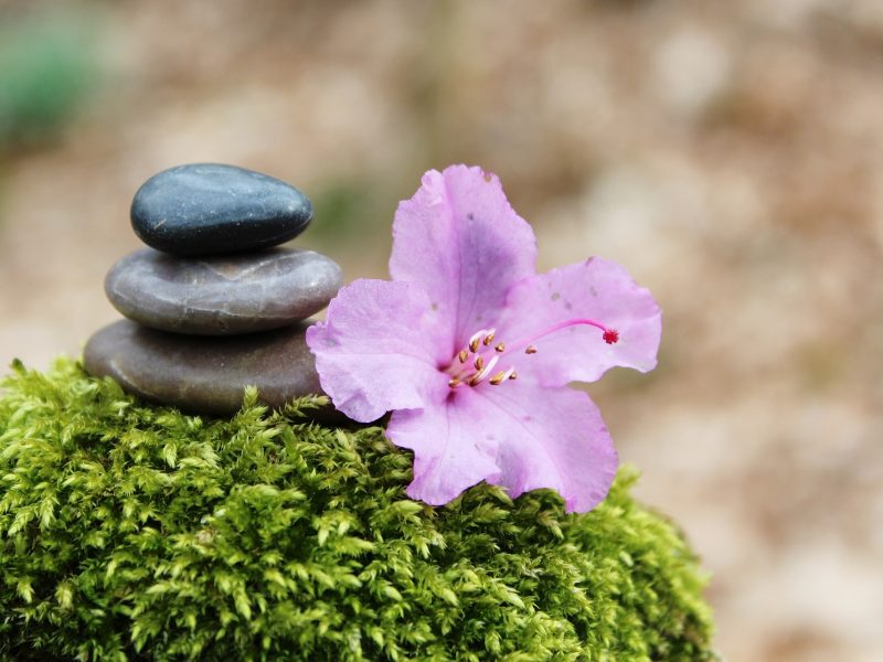 How To Create a Simple Spiritual Practice around the Pagan Holy Days – the Solstices & the Equinoxes – at www.TheSeasonalSoul.com