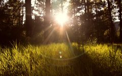 6 Ways To Work Nature Into Your Morning Routine (Even Though Summer's Over). Read more at www.TheSeasonalSoul.com