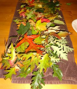 Supplies for Autumn Equinox / Mabon Craft with Kids. Discover more seasonal craft ideas at www.TheSeasonalSoul.com