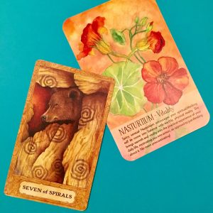 New Moon Tarot Spread for New Beginnings at Spring & Ostara