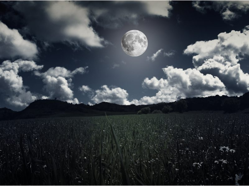 Spring Full Moon Ceremony Honoring Mothers for Mothers Day