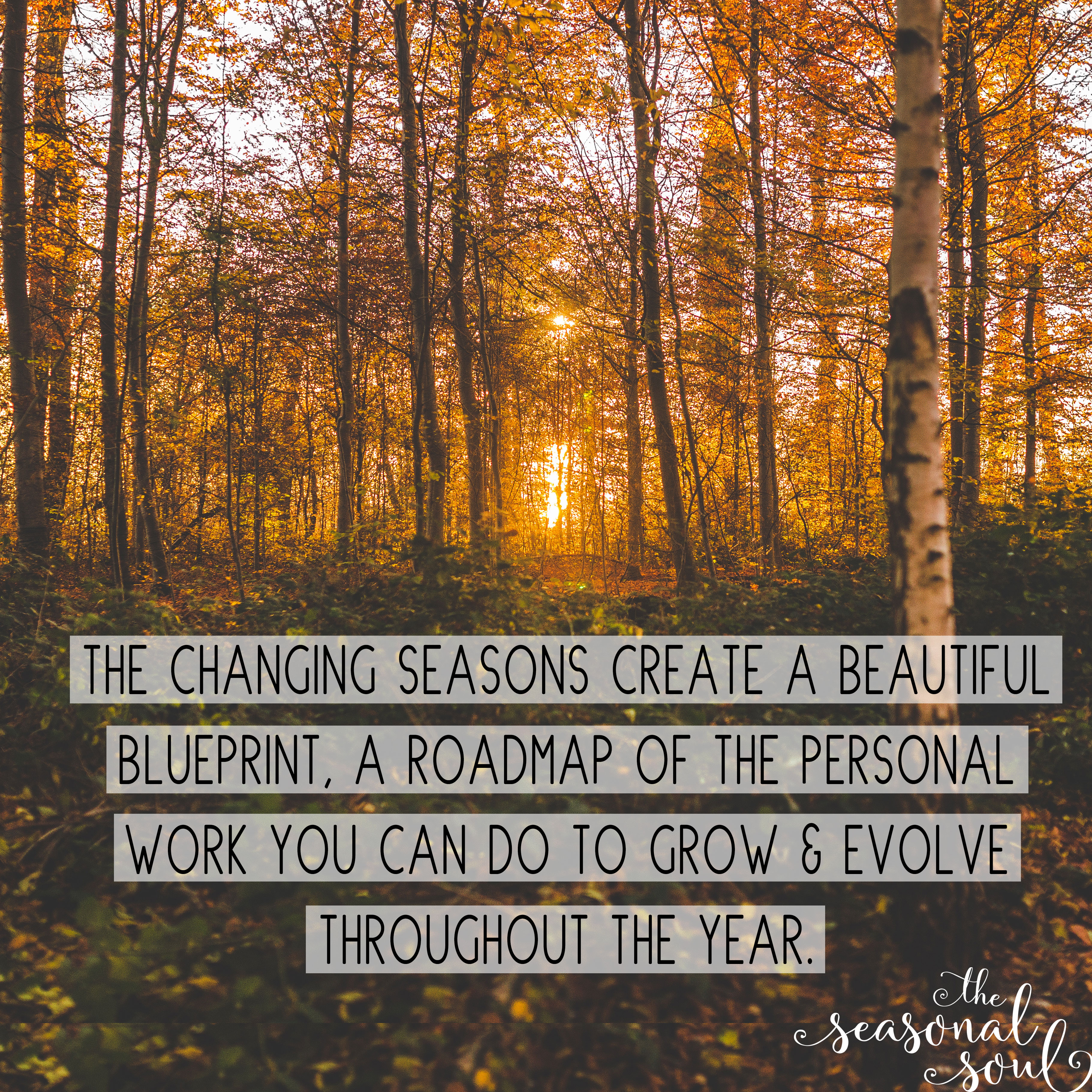 The changing seasons are a roadmap of the spiritual work you can do at each point throughout the year to grow & evolve.