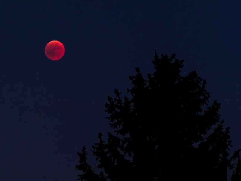 What does the Lunar Eclipse Mean?