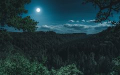 Inspire New Growth with this Spring Full Moon Ritual