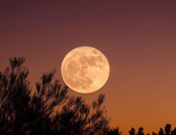 Full Moon Ritual for Spring